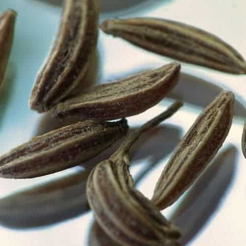 Caraway Seed Essential Oil