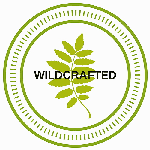 Links & Resources - Wildcrafted Essential Oils